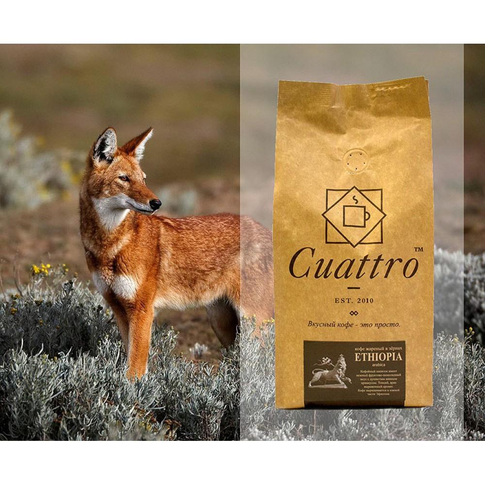 Кофе в зернах CUATTRO Ethiopia (Эфиопия)