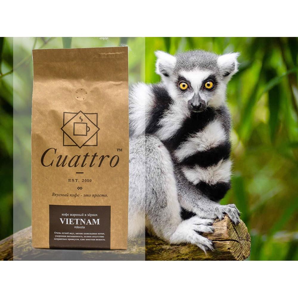 Кофе в зернах CUATTRO Vietnam Robusta Dambri Falls (Дамбри Фоллз)