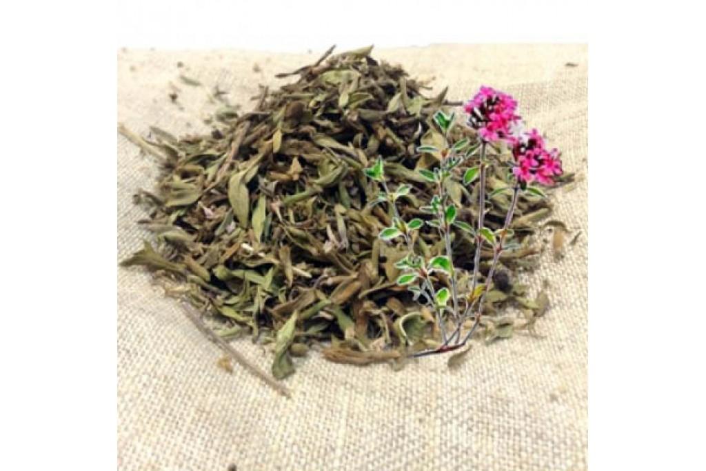 Натуральные добавки в чай, травы
