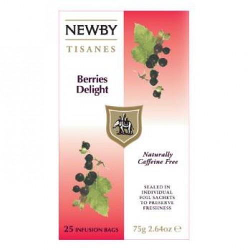 Newby Ягодное наслаждение (25 пакетиков по 2 гр)